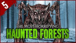 5 Most TERRIFYING Haunted Forests - Darkness Prevails