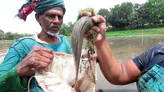 Really Amazing Traditional Fishing Video Real Fish Hunting(Part-1)