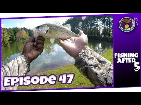 The Last Good Fishing Day (Hays Nature Preserve, Huntsville AL) - Fishing After 5
