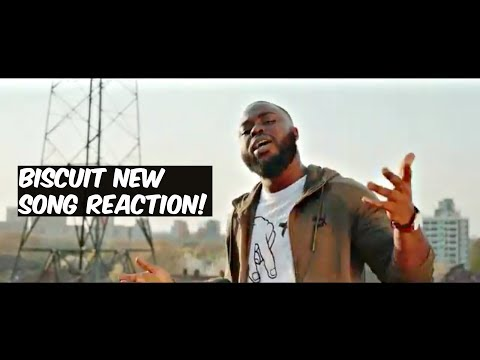 BISCUIT'S NEW SONG REACTION!
