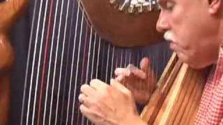 Daily Harp Moments-Pajaro Campana ( Bell Bird)