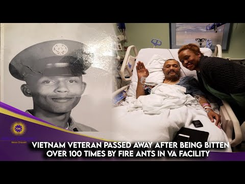 Vietnam Veteran Passed Away After Being Bitten Over 100 Times By Fire Ants In VA Facility
