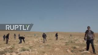 State of Palestine  Israeli settlers attack shepherds and activists in the West Bank