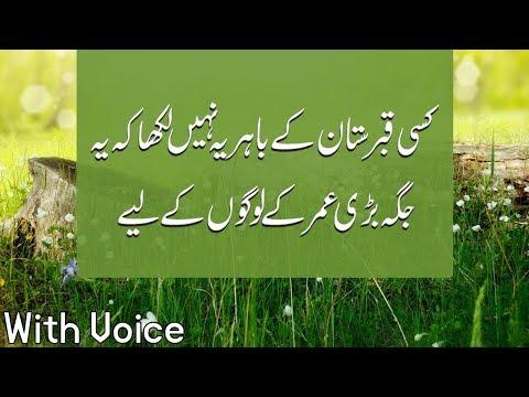 Kisi Qaberstan K Bahir,Most Beautiful Quotes Collection