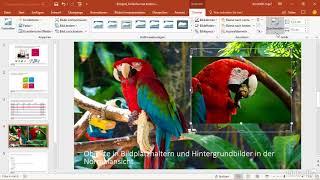 PowerPoint 2016: Mit Vorlagen arbeiten: Trailer |video2brain.com