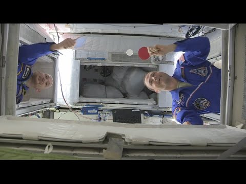 Alexander Gerst and Reid Wiseman play Ping-Pong in microgravity
