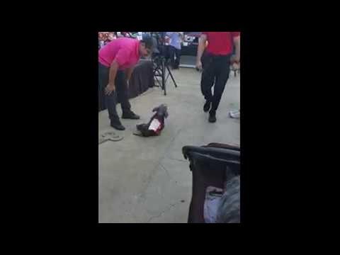 Super Cute Doggy Wind Up Toy Costume || ViralHog