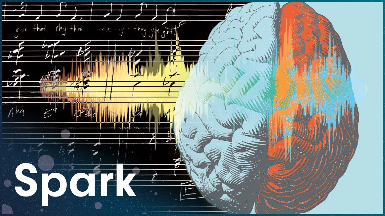 Download How Does Your Brain Process Music Differently To Speech? | Science Of The Senses: Hearing | Spark