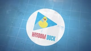 Introduction | Wisdom Duck