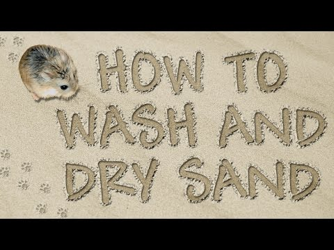 How to Wash and Dry Sand by Hammy Time