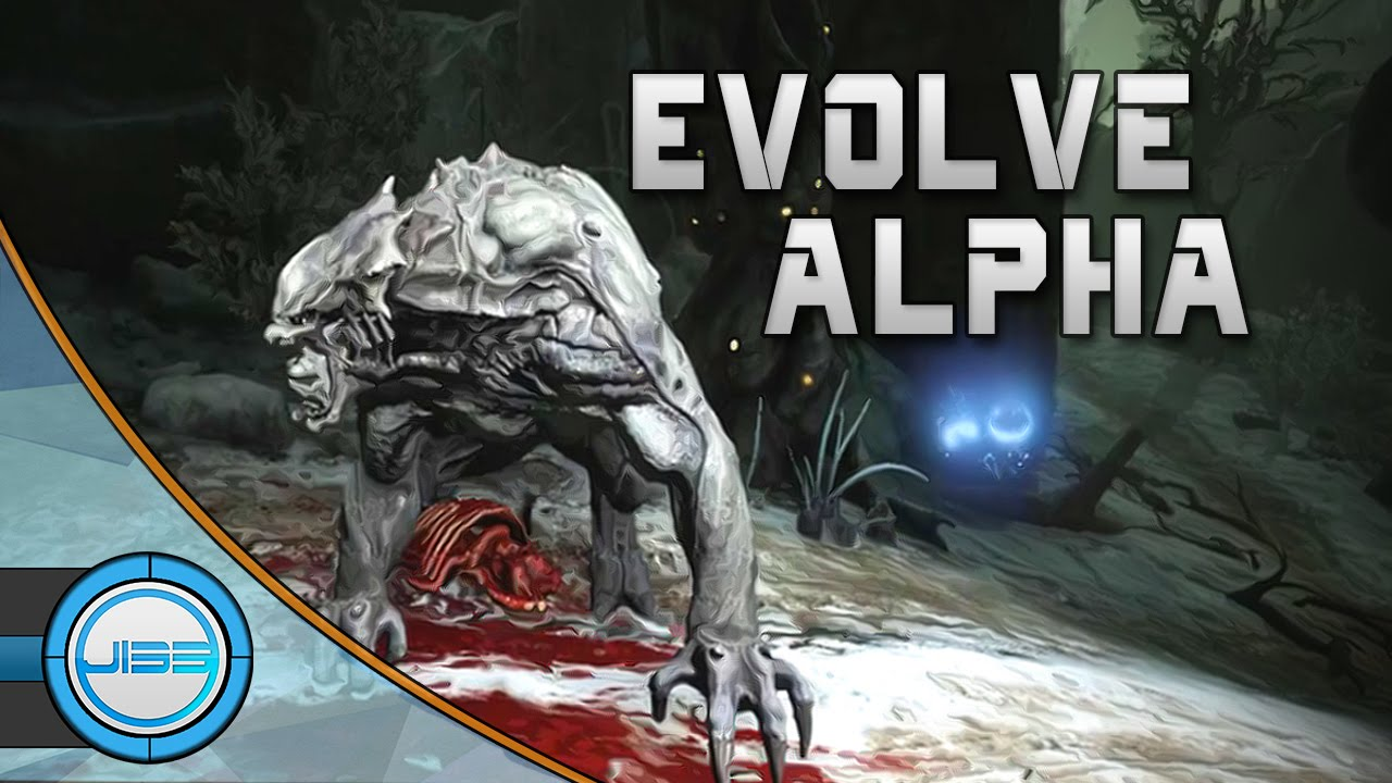 Evolve alpha 60 fps webcam