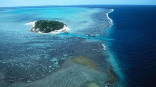 (VIDEO) R I P Great Barrier Reef pronounced dead by scientists