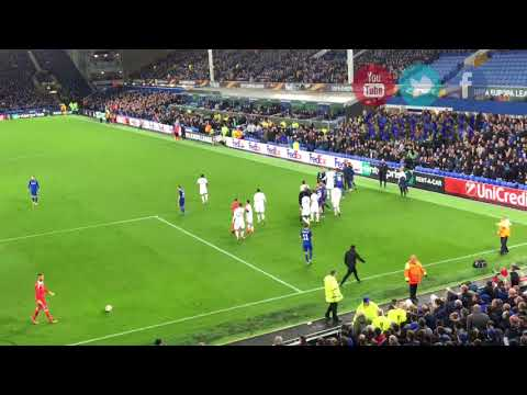 Ashley Williams s Everton Don't Let Lyon Players Push Him about. Fight.