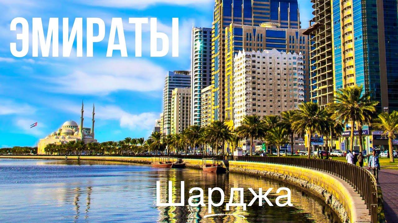 Орел и решка дубай 2018 смотреть онлайн купить недвижимость в сан тропе