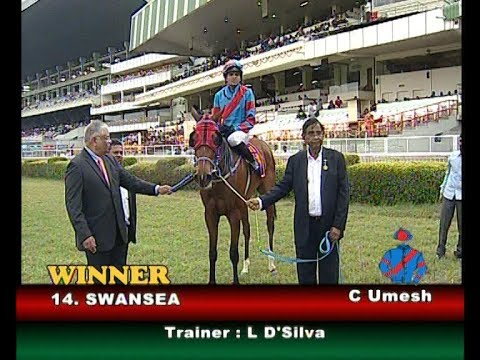 Swansea with C Umesh up wins The Deccan Bookmakers Welfare Association Juvenile Million 2019