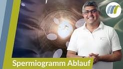 Spermiogramm: Wie läuft das ab und wie wird es ausgewertet? | Urologie am Ring