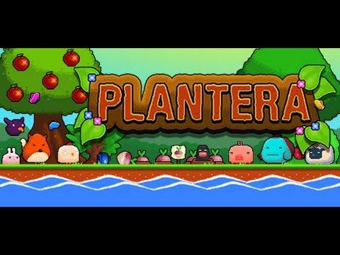 Plantera game play |