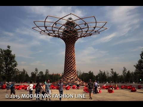 Discovering the Milan Expo 2015