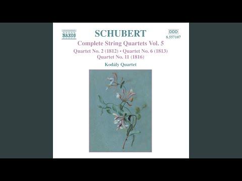 String Quartet No. 6 in D Major, D. 74: Allegro ma non troppo