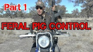 Contract Shooting Feral Pig control -Part 1