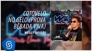 Baixar Wesley Safadão - Cotovelo no Gelo (Prova Bêbada Viva) (WS Mais Uma Vez) [Áudio Oficial]