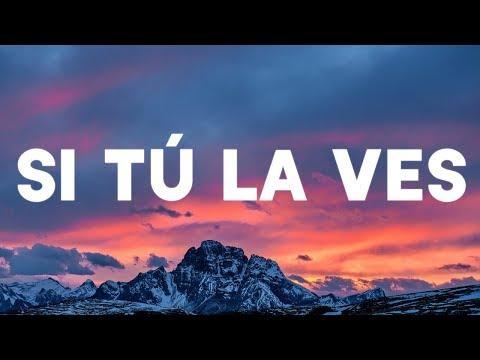 Nicky Jam - Si Tú La Ves (Lyrics / Lyric Video) ft. Wisin