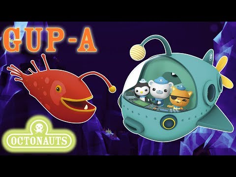 Octonauts - Exploring the World's Oceans | Gup A | Aquatic Vehicles