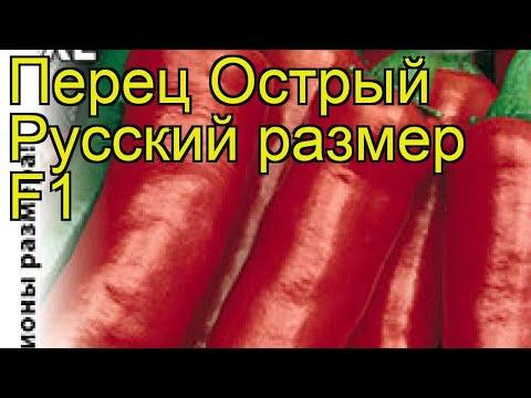 Перец острый Русский размер F1. Краткий обзор, описание характеристик cápsicum ánnuum