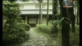 Sabiduria y antiguedad - Los japoneses