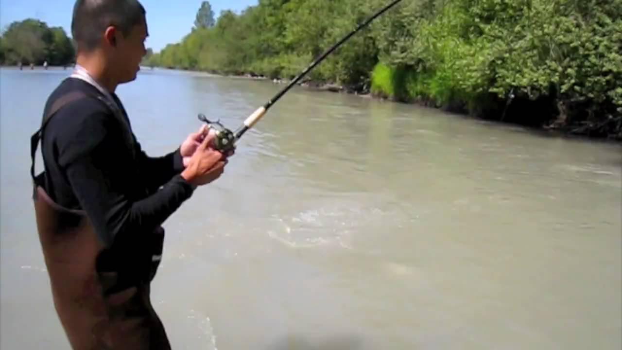 Puyallup river salmon fishing youtube for Puyallup river fishing