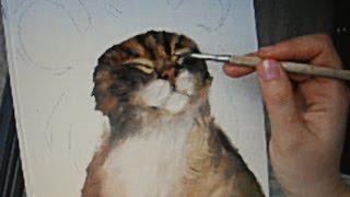 Как нарисовать кота красками. Ускоренное видео(