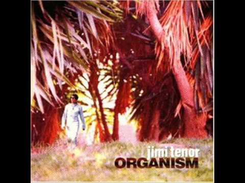 Jimi Tenor - My mind (from the album Organism)