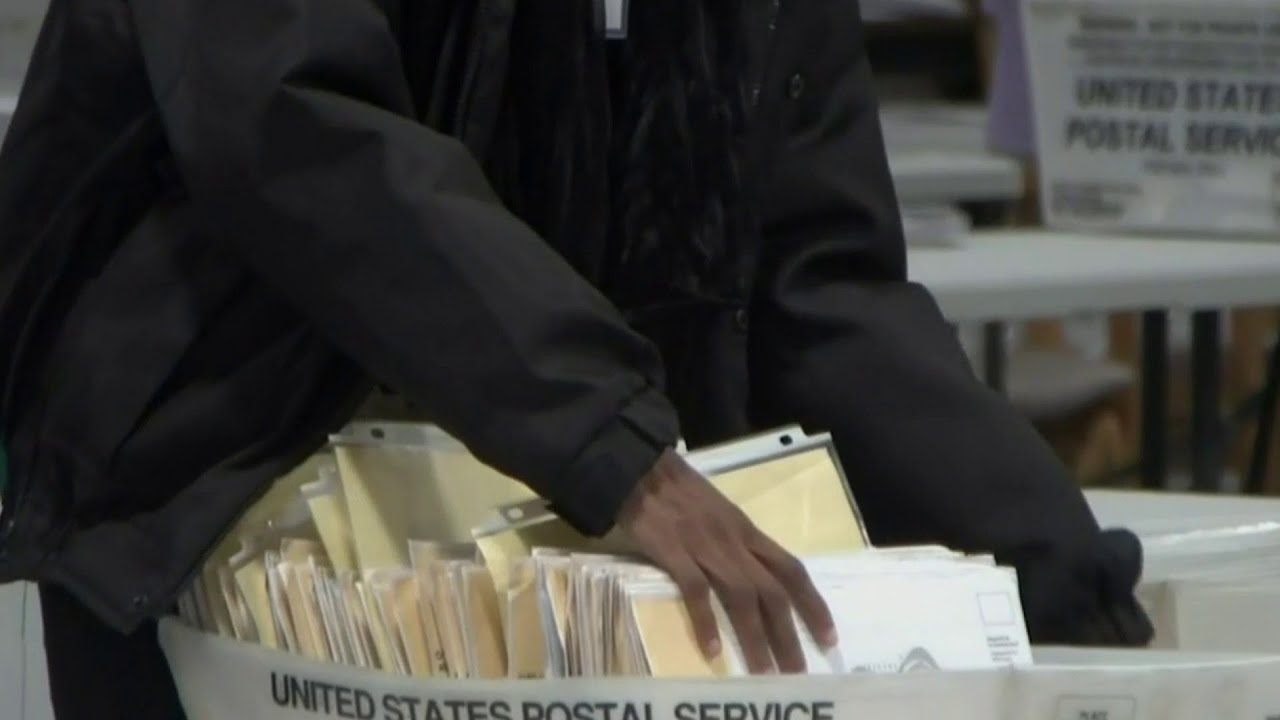 Sen. Gary Peters calls claims of election fraud 'pathetic'