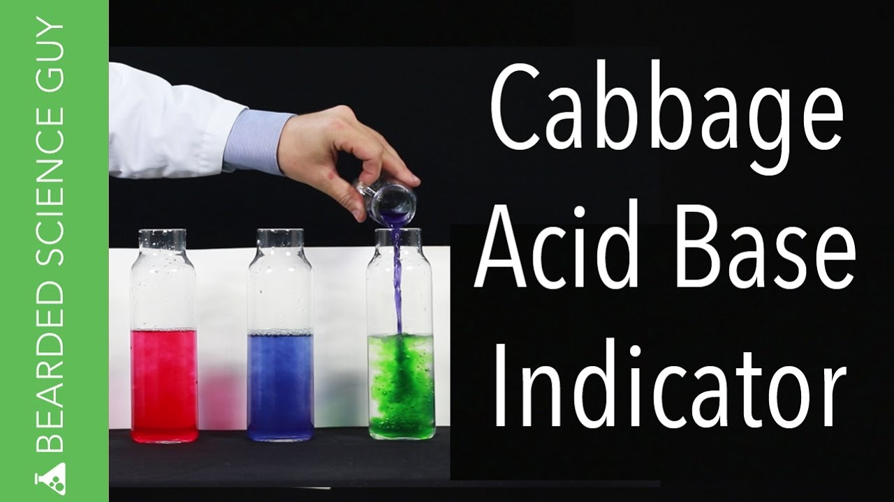 acid base indicator Acid-base reaction theories [] acids and bases are everywhere some foods contain acid, like the citric acid in lemons and the lactic acid in dairy.