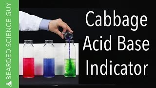 Cabbage Acid Base Indicator (Chemistry)