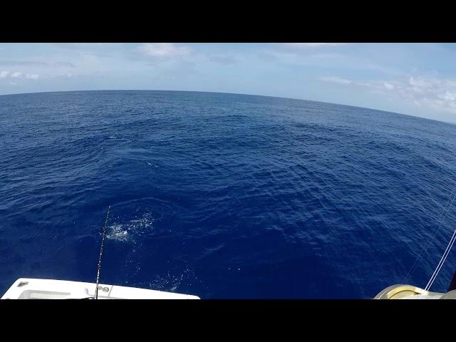Hula Girl Sport Fishing Chaters in Kona Hawaii