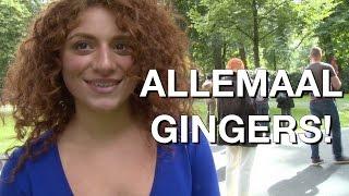 VanLeeuwen op het Gingerfestival!