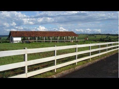 Clique e veja o vídeo Curso Construção de Cercas na Fazenda - Equipamentos para Construções Rurais