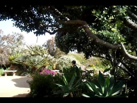 Meditation Garden   San Diego