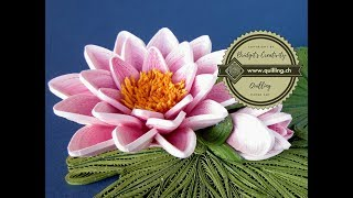 Bridgit's Quilling Water Lily's (Nymphaeaceae) Seerose