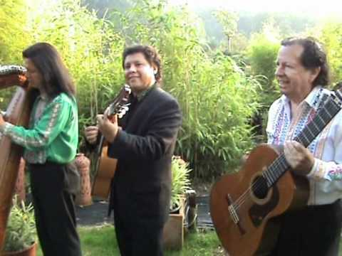 Lateinamerikanische musik