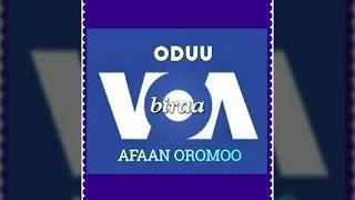 Repeat youtube video Voa Afaan Oromoo 24 Ebla 2017