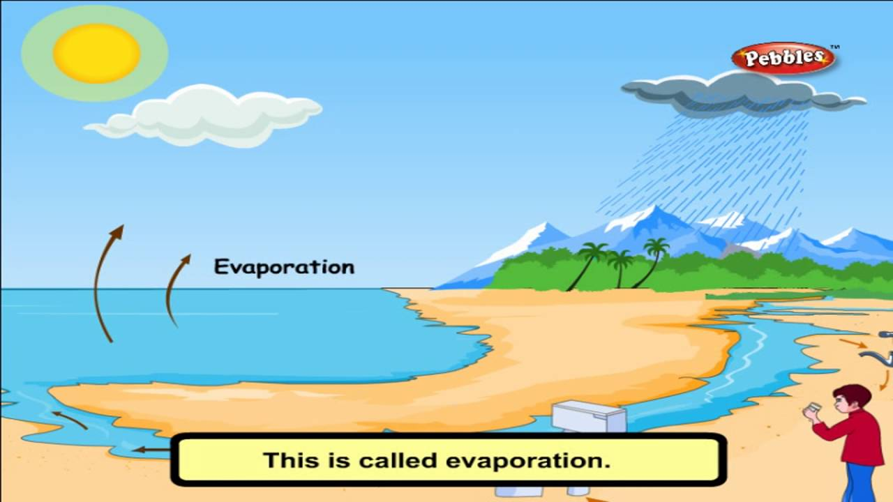 cbse 4th cbse science air water weather ncert cbse syllabus animated video youtube [ 1280 x 720 Pixel ]