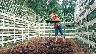Survival Skills: How to Grow a organic vegetable garden - Part2