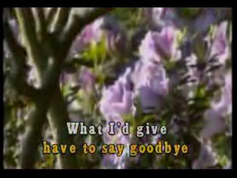 VIDEOKE - Bon Jovi - Always.flv