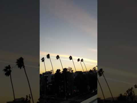 Winds in Santa Monica