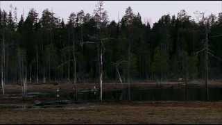 BBC Дикая природа России - Первозданные долины Урал