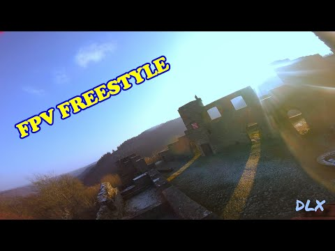🏃♂️ Friends & Castles 🏰 | FPV Freestyle