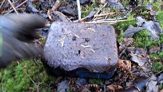 Money box found buried at WW2 location.