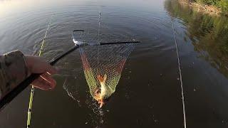 Рыбалка в Астрахани 2019Рыбалка на сазанаОтдых в АстраханиРыбалка в Астрахани с палатками